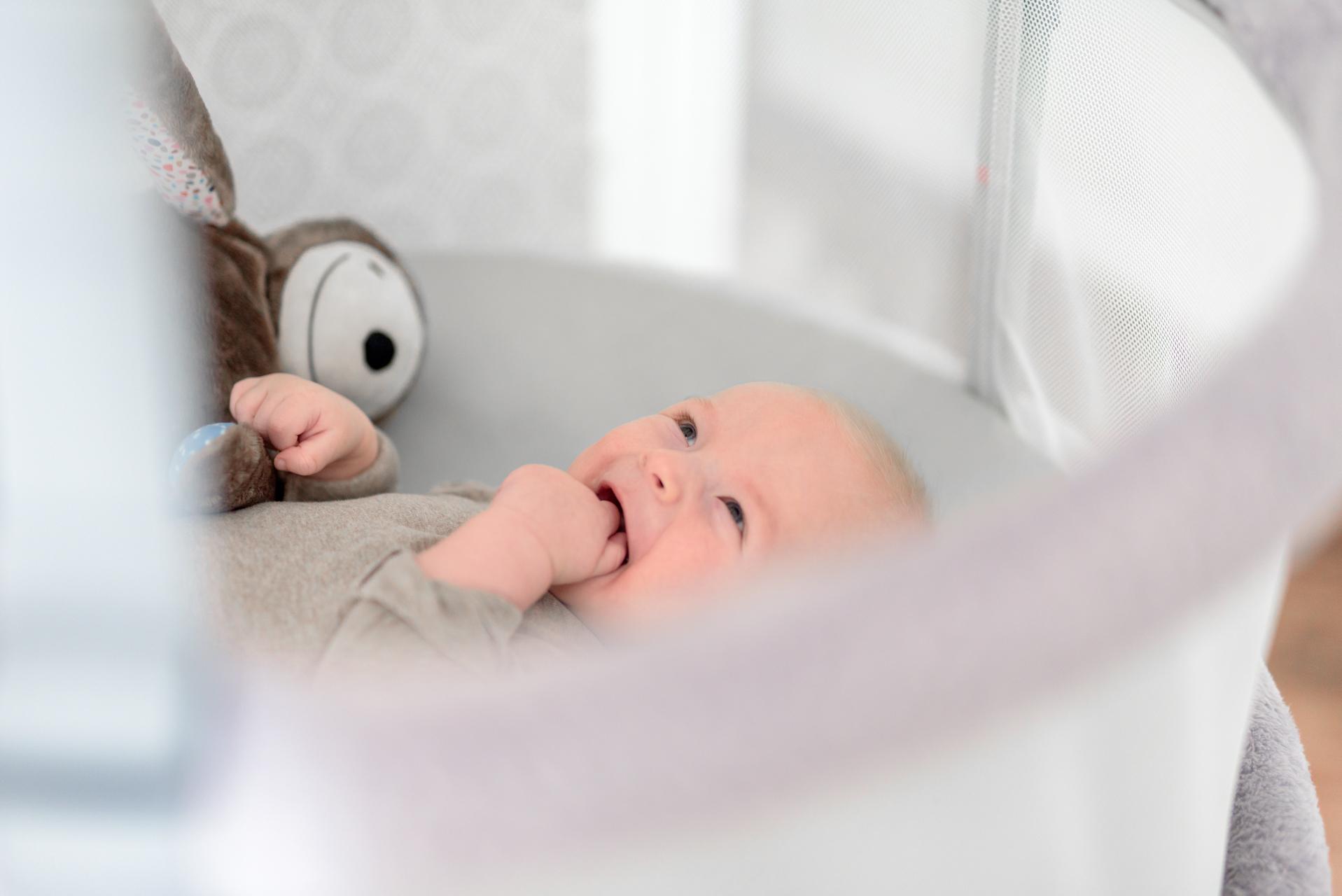 E-zzy ezzy whisbear, jak uspać dziecko