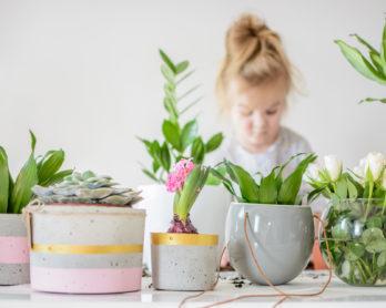 Nie sądziłam, że tak szybko się zestarzeję i zacznę sadzić kwiatki!